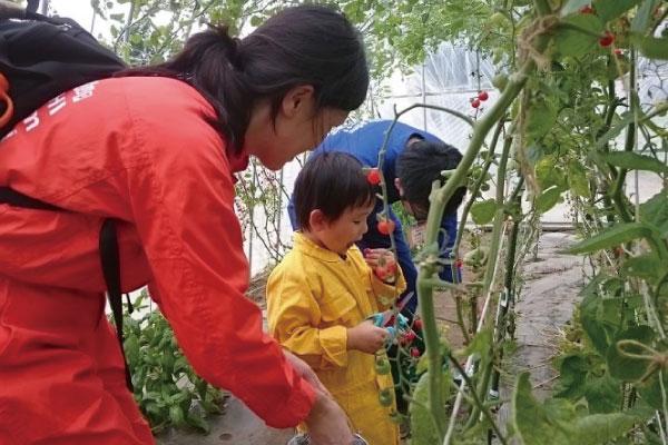 まるごと食農体験ツアー(星野リゾートトマム・アクティビティメニュー)
